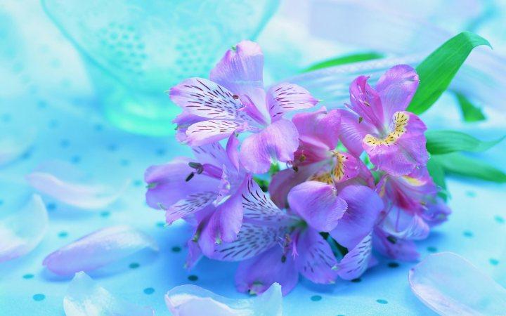 spring1.jpg?w=720